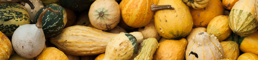 yellow and brown gourds